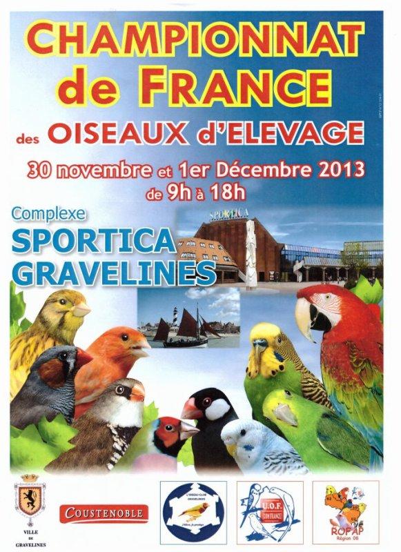 Affiche france 2013