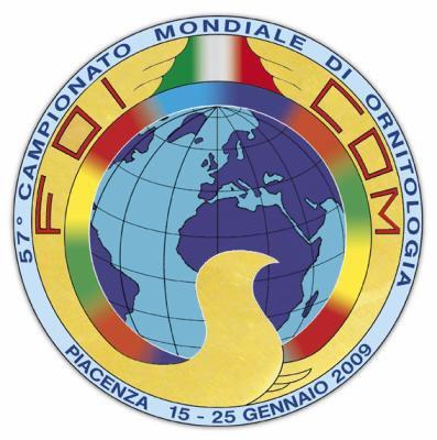 Affiche mondial 2009