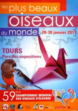 Affiche mondial 2011