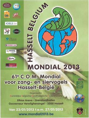 Affiche mondial 2013
