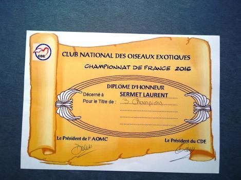 Diplome france 2016